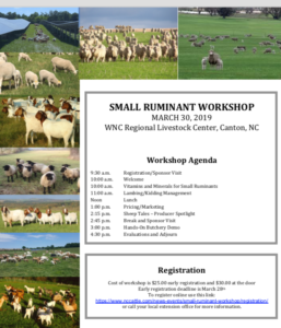 Cover photo for Small Ruminant Workshop 2019